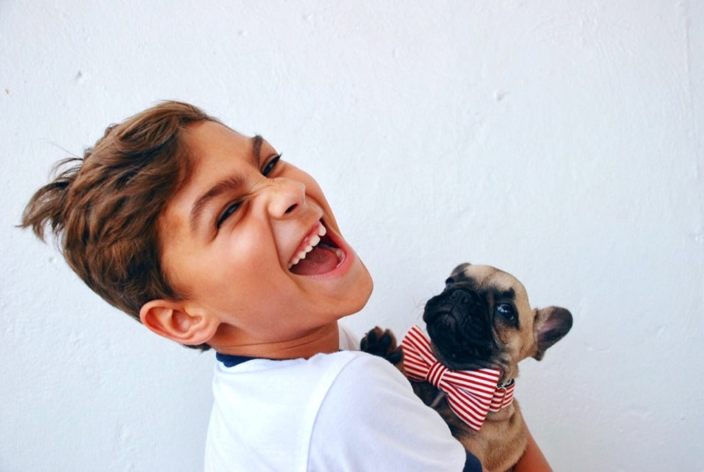 Instagram Marketing Examples for Pet Stores