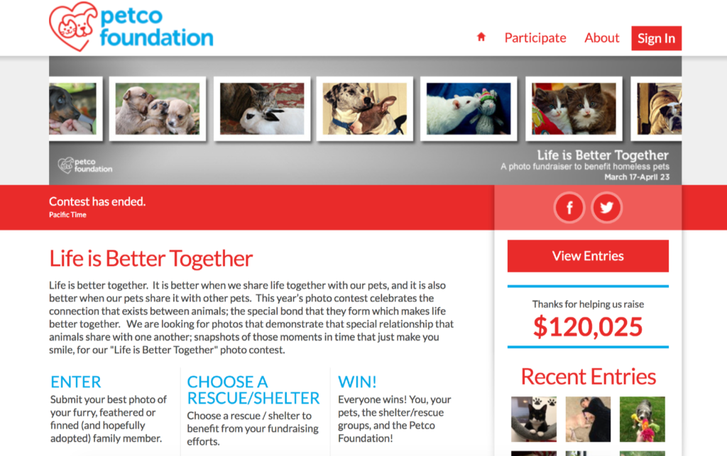 Petco Foundation | Life is Better Together