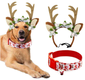 Christmas ideas for pets - antlers