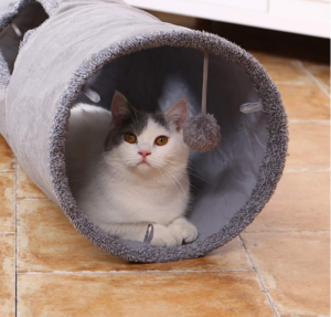 Christmas ideas for your pets - cat tunnel